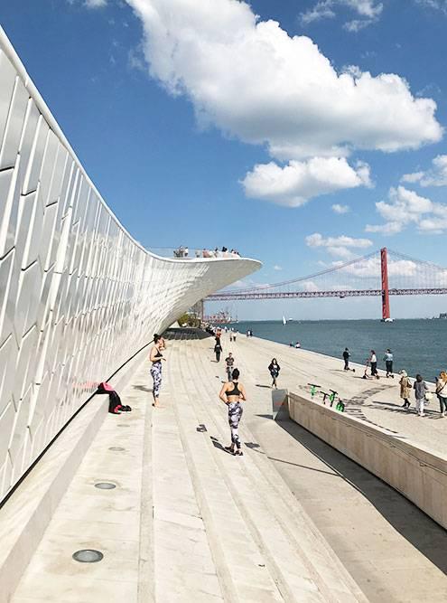 Стены музея MAAT, где все гуляют и устраивают фотосессии
