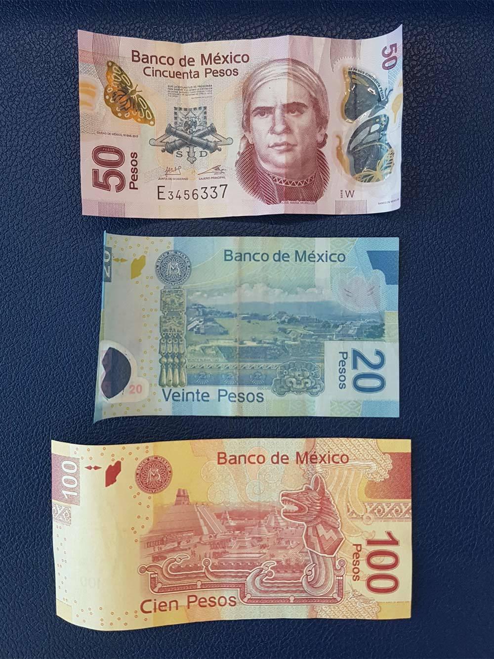 Мексиканские купюры. Банкноты в 20 и 50 песо изготавливают из полимеров, срок их службы в несколько раз дольше бумажных