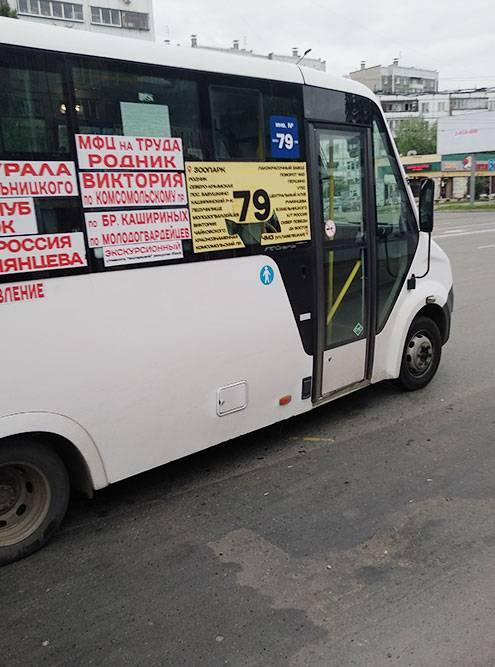 Экскурсионные автобусы не нужно лицензировать, так что де-юре к ним никаких вопросов, а де-факто это самая обычная маршрутка