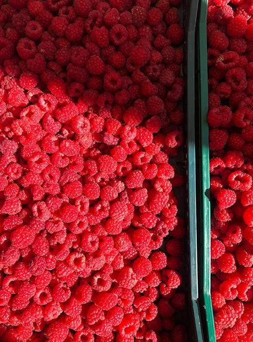 Я была в Северной Македонии в августе, когда на рынках продают много ягоды