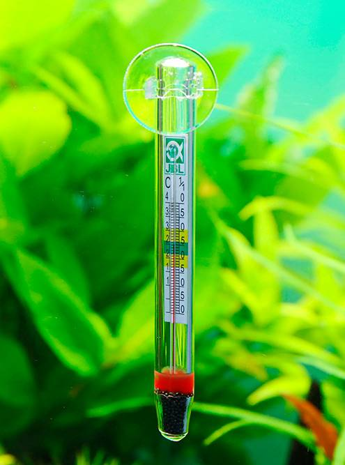 Спиртовой термометр внутри. Источник: jbl.de/ru