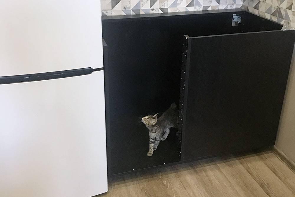Еслибы мы не укоротили шкаф, онбы не поместился