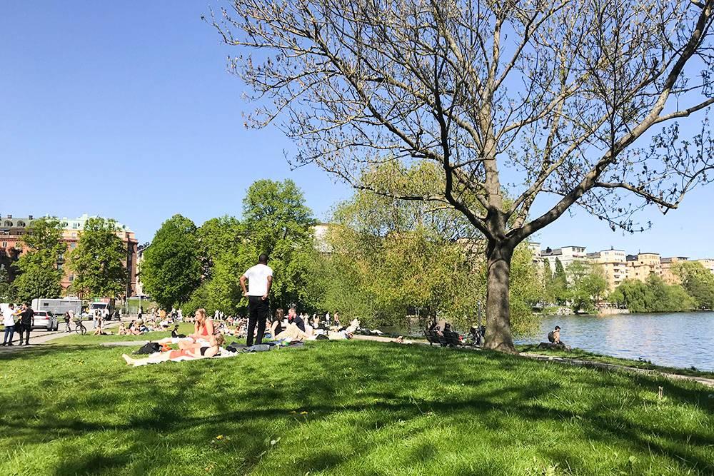 Парк, где мы сидели