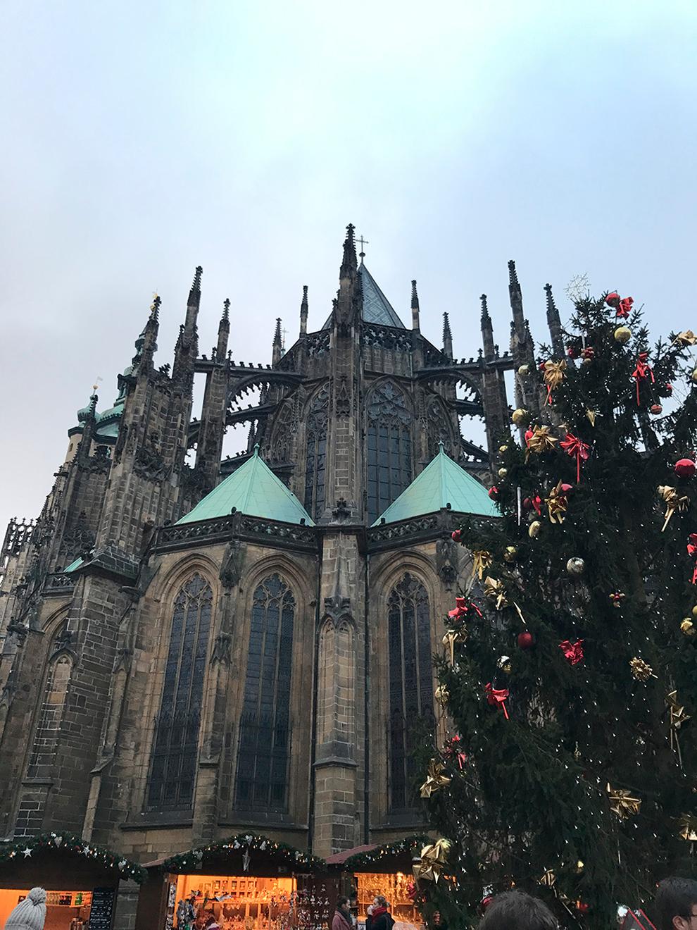 К новогодним праздникам около собора устанавливают украшенную елку. Источник: Анастасия Постникова