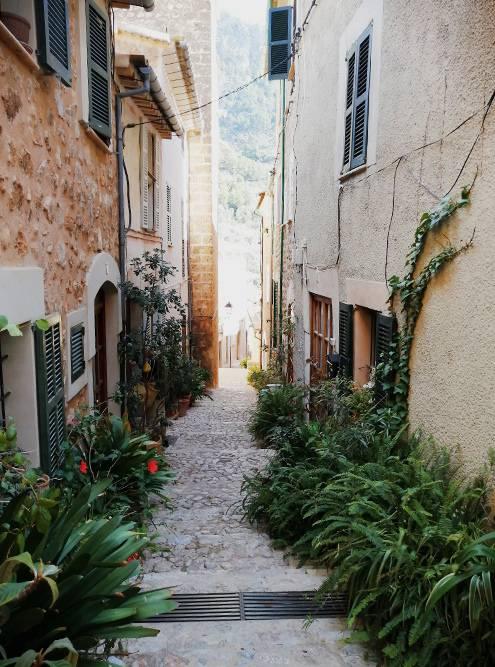 В Форналюче сильна традиция выставлять цветы в горшках на улице. Это делает город более зеленым и уютным