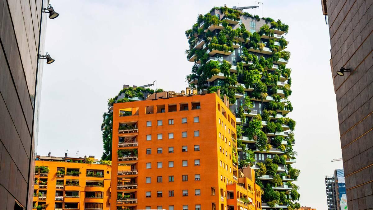 Как бесплатно поехать в Милан на экологический саммит