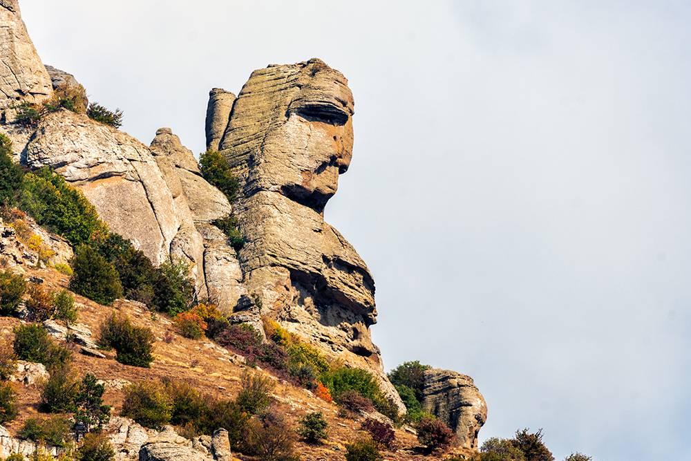 Среди чудовищ можно разглядеть голову человека. Источник: WR studio / Shutterstock