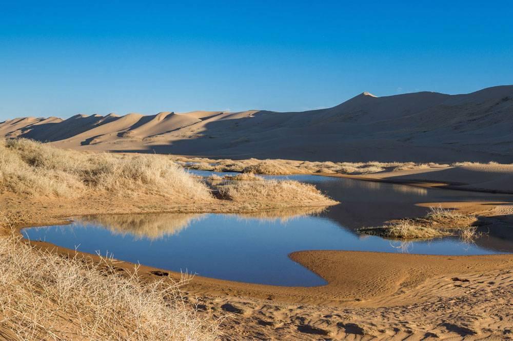 А вот это можно увидеть, если отъехать от Улан-Батора на 500—1000 км. Фото: Олег Ермолов