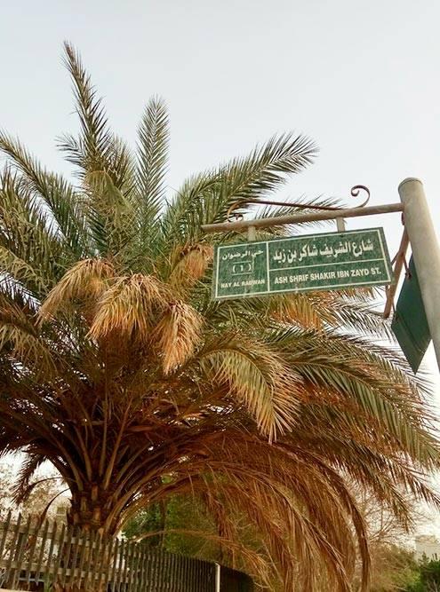 Уличные указатели — только на арабском