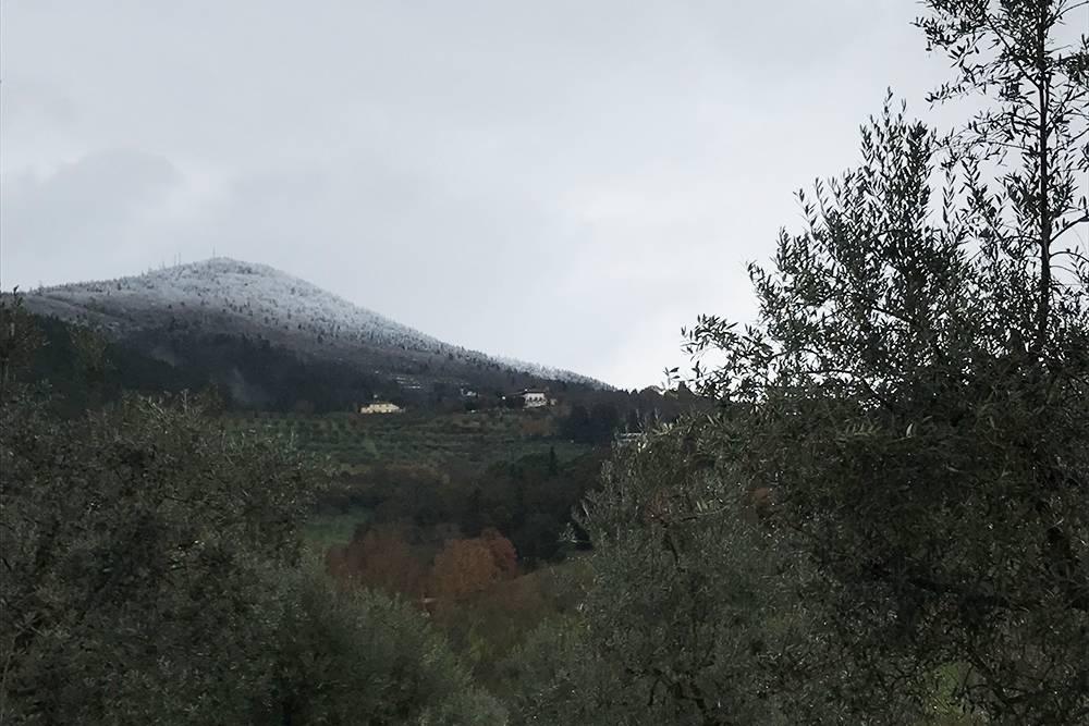 В этом году снег зимой был только в горах. Кстати, на этом фото — один из немногих пасмурных дней за всю зиму