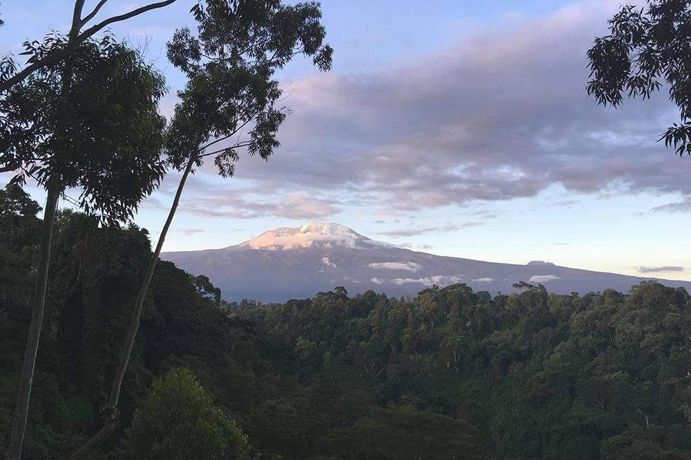 Снега Килиманджаро после сезона дождей