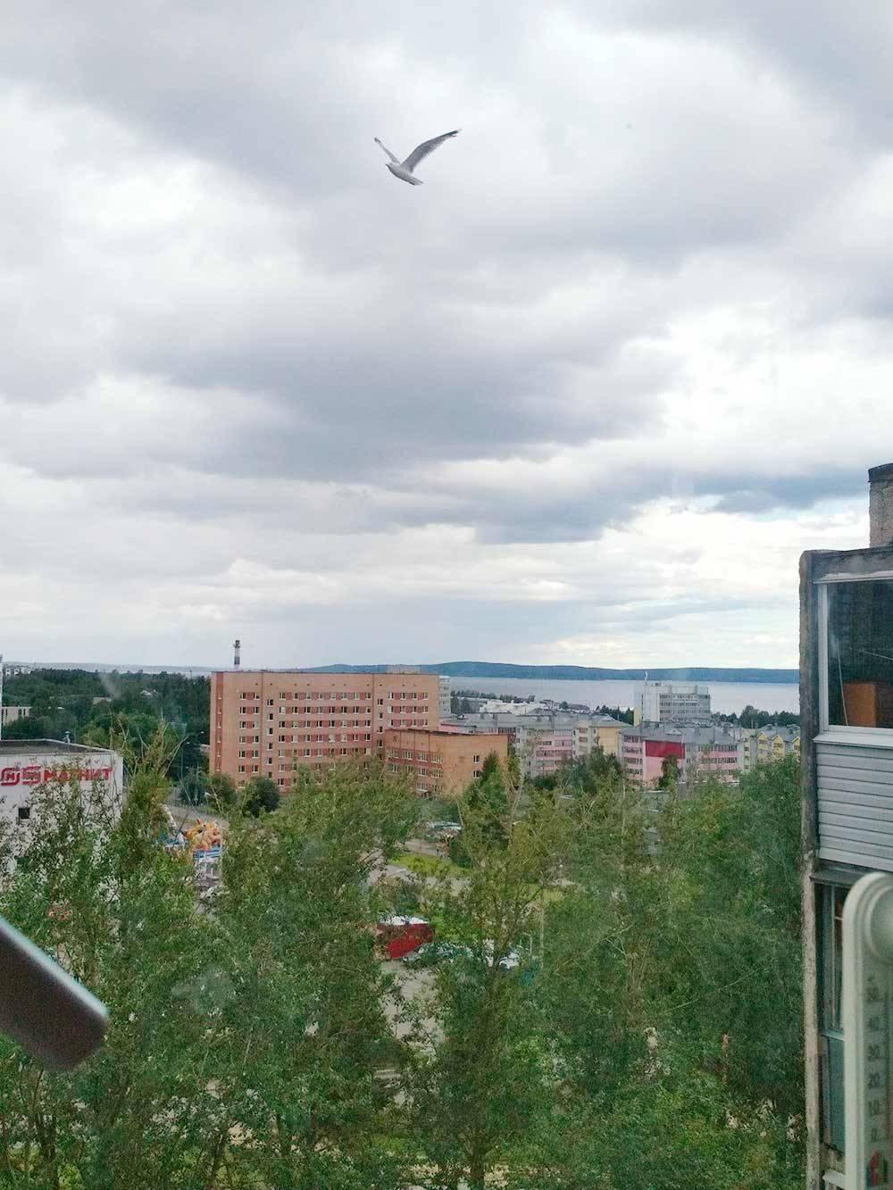 Вид из окна нашей городской квартиры