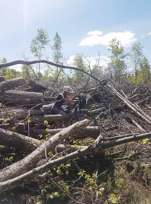 Здесь мы ошиблись с выбором дороги — пришлось перетаскивать велосипеды через кучу поваленных деревьев и веток, потеряли много времени и сил