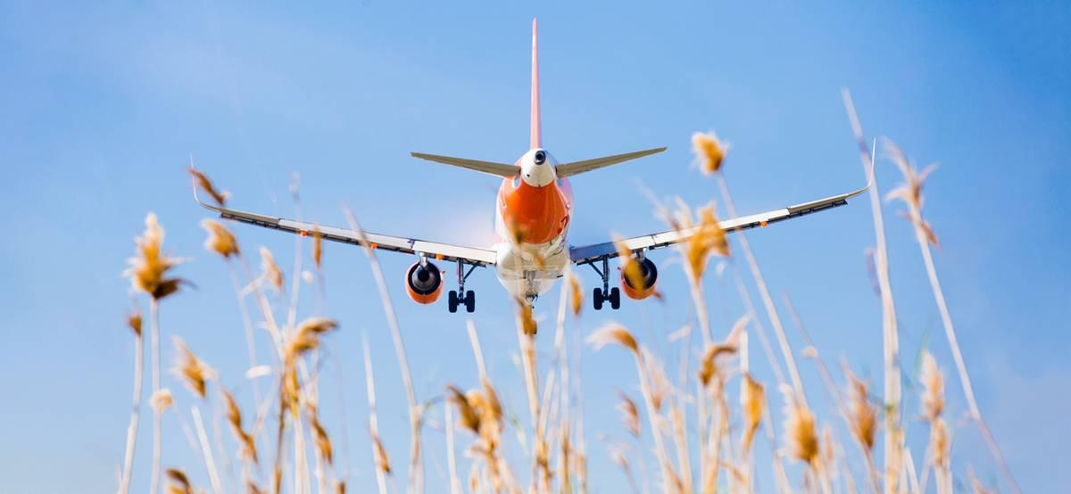 Россия возобновит авиасообщение с Испанией, Словакией, Кенией и Ираком