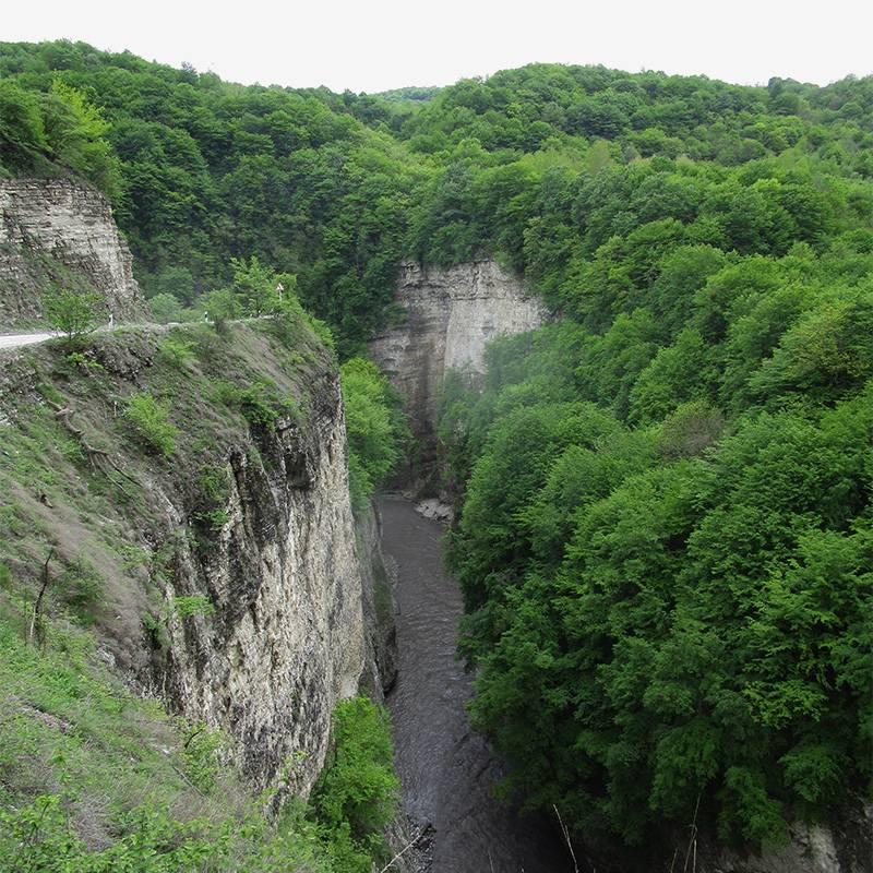 Река Чанты-Аргун по дороге к Ушкалойским башням
