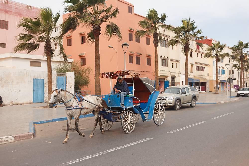 Кроме такси в Марокко есть повозки, запряженные лошадьми