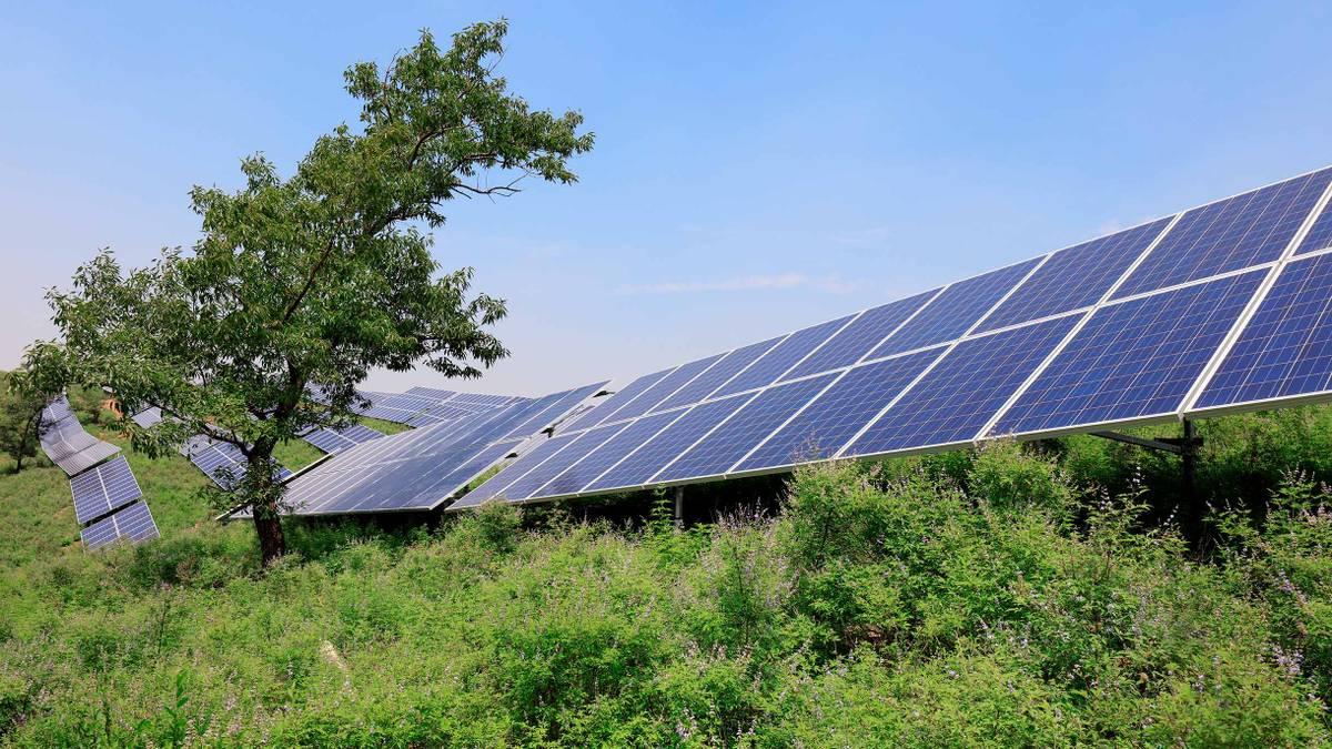 Выгодно ли устанавливать солнечные панели