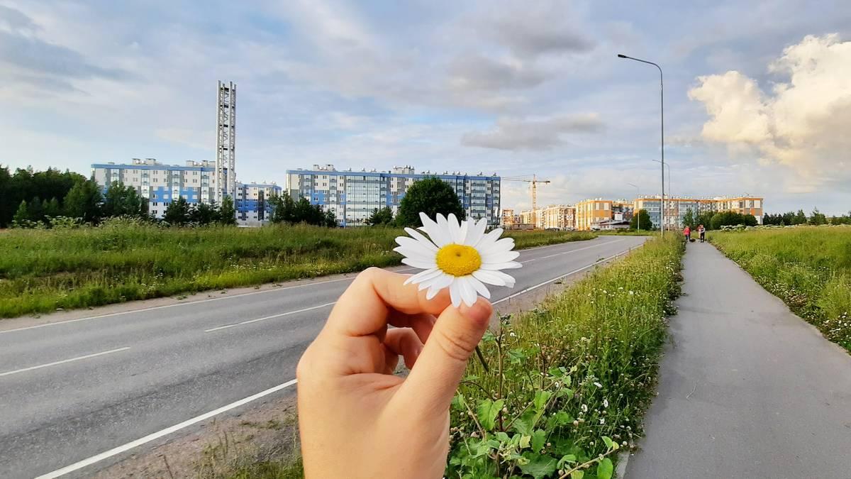 Я купила квартиру рядом с Петербургом по программе сельской ипотеки под2,7%