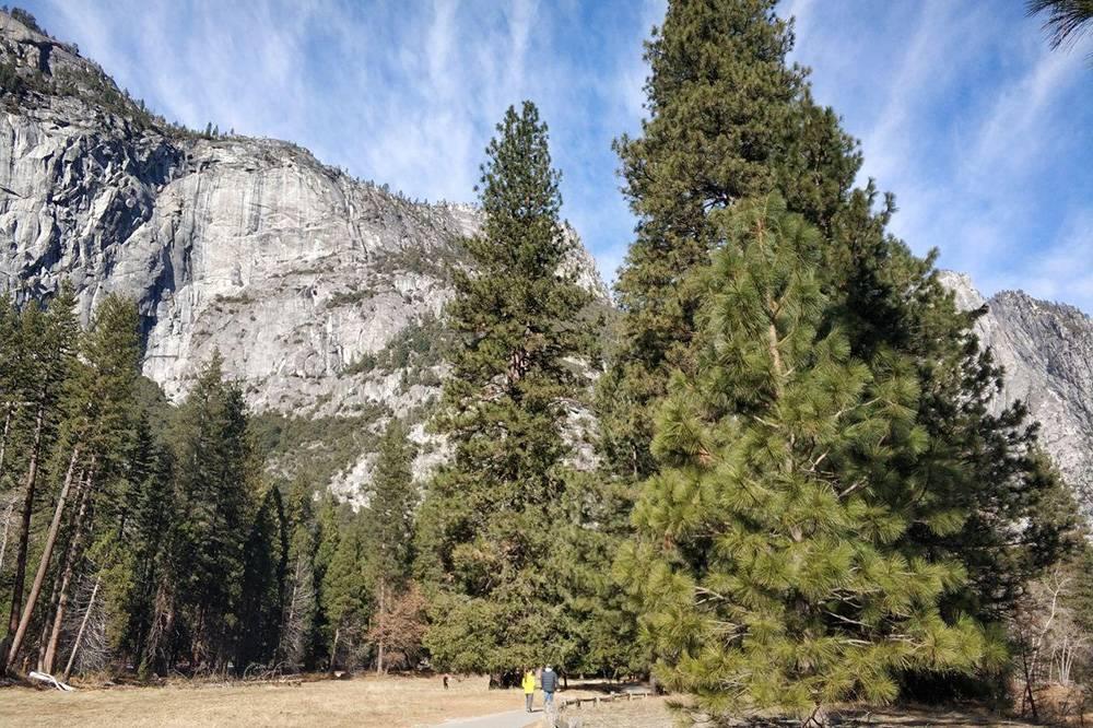 В Йосемити каждый раз приезжаешь как в первый. Здесь проложено более 1300км дорог дляхайкинга