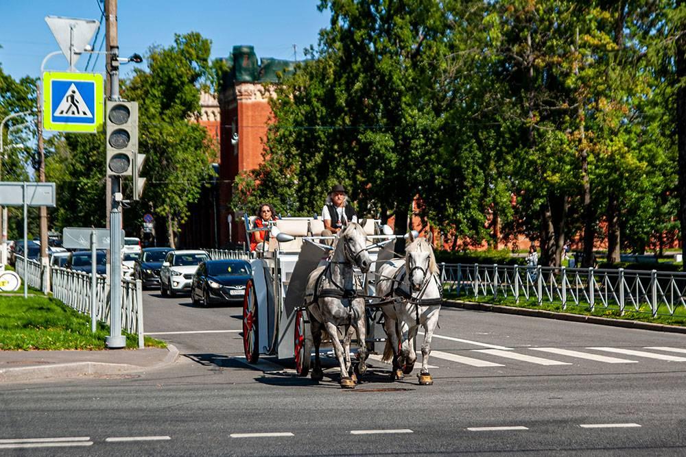 Такая карета едет от станции Новый Петергоф до Нижнего парка. Она ждет туристов у выхода с платформы
