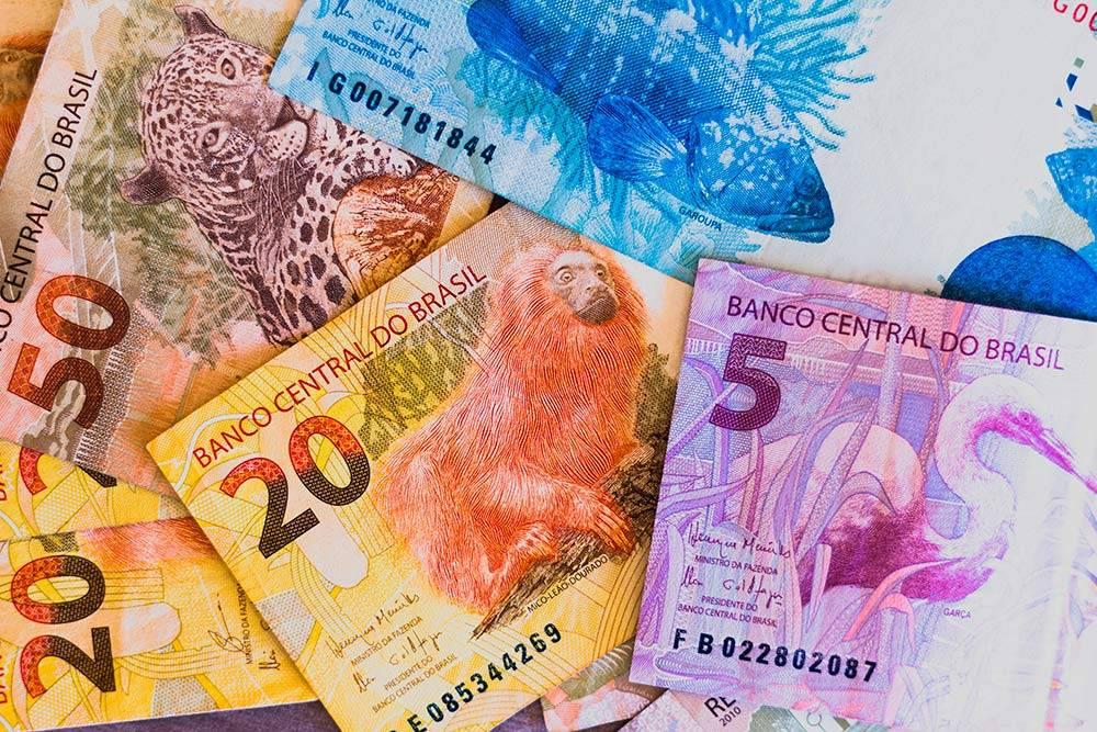 На деньгах в Бразилии нарисованы местные животные, которые находятся подугрозой исчезновения. Чемвыше номинальная стоимость, тем больше банкнота по размеру. Вэтом плане бразильские деньги похожи наевро ифунты стерлингов. Источник: rafapress / Shutterstock