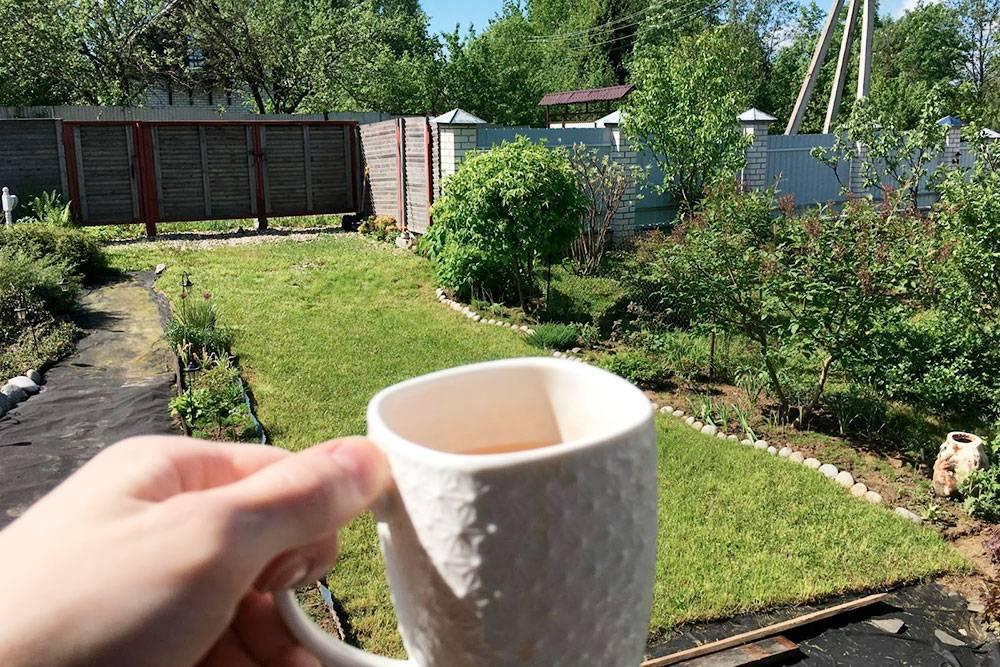 Пью чай на природе