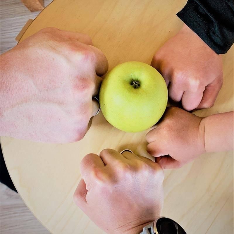 В нашей семье двое взрослых и двое детей. Наши кулачки выглядят так