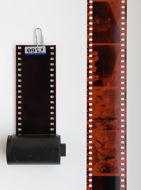 Всем знакомая пленка 135-го формата. Кстати, матрицы полнокадровых зеркальных фотоаппаратов сохранили размер одного кадра на пленке — 24 × 36 мм
