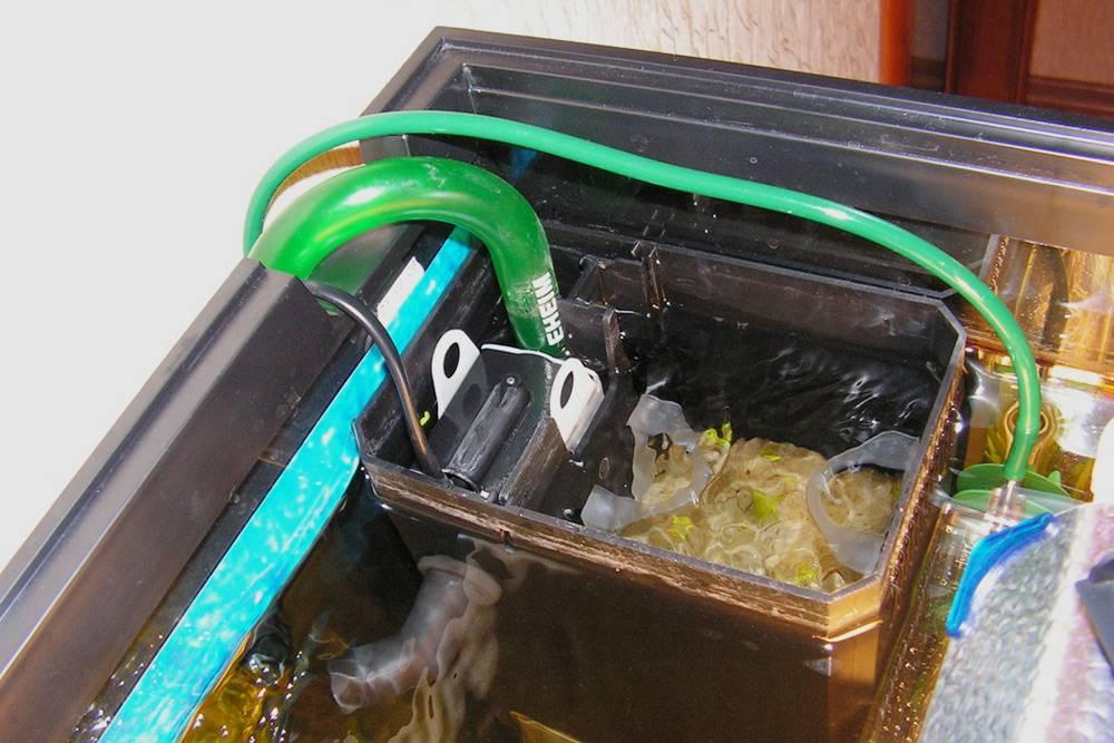В аквариумах Juwel есть встроенный короб подоборудование ивырез подвнешний фильтр. Источник: aqa.ru