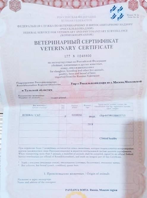 Чипирование подтверждал ветеринарный сертификат