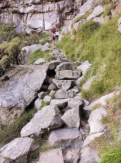 Практически весь подъем Platteklip Gorge идет по таким камням. Они очень скользкие, особенно осторожными нужно быть на спуске