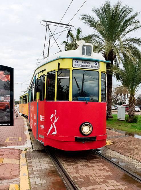 По центру Антальи ходит ретротрамвай «Ностальжи». Источник: VittoriaChe / Shutterstock