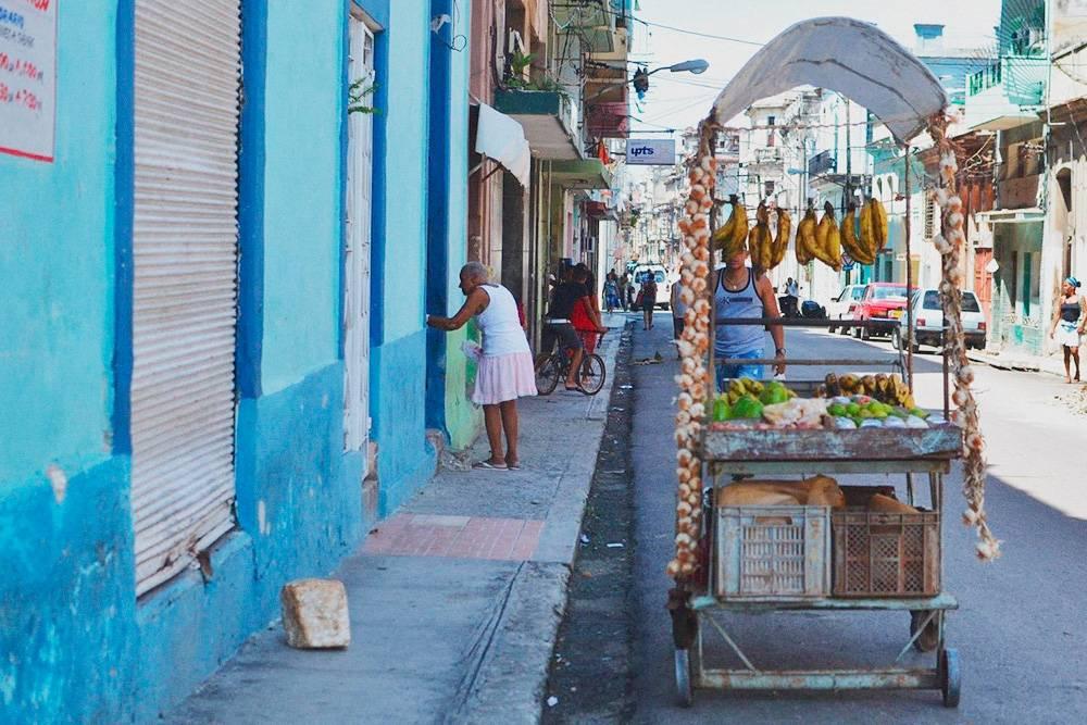 На улице много продавцов авокадо, манго и бананов. Все цены в национальной валюте — песо