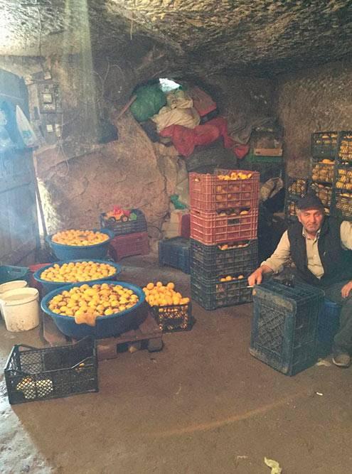 Наобратном пути мызаметили вход насклад лимонов ипопросили водителя остановиться
