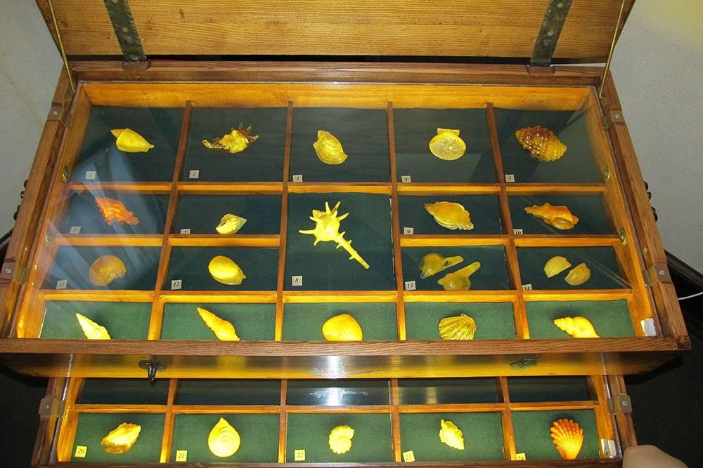 Экспонаты из янтаря. Источник:wikimedia.org