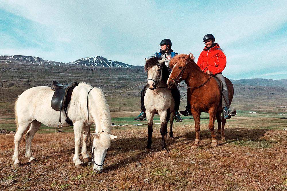 Конную прогулку проводила пятнадцатилетняя девушка из Германии, которая с детства занимается верховой ездой и приехала в Исландию на пять месяцев по обмену
