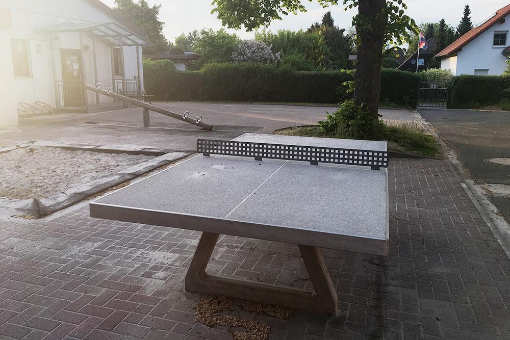 На территории есть стол для настольного тенниса