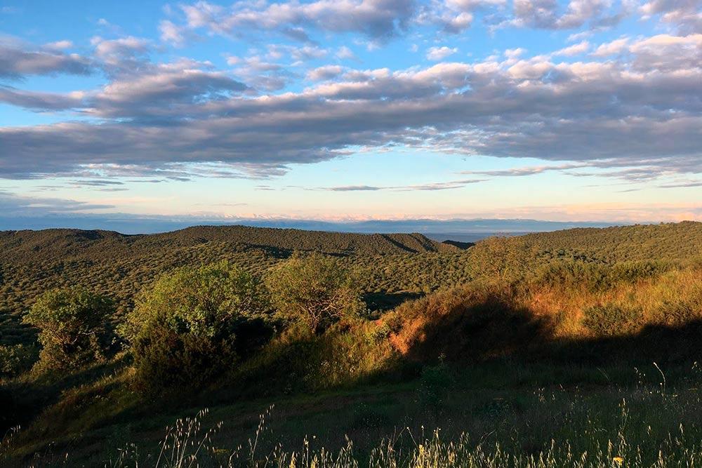 Пейзажи в Вашловани меняются постоянно