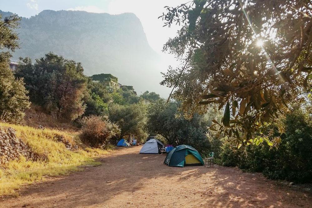 Свою палатку мы разбили поддеревьями, чтобы не страдать от жары
