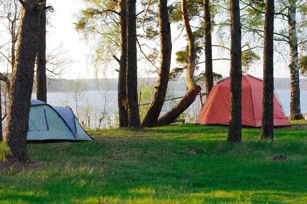 Наш лагерь стоит на пустой поляне. Мы всё привезли с собой: слева — палатка, справа — шатер с мебелью
