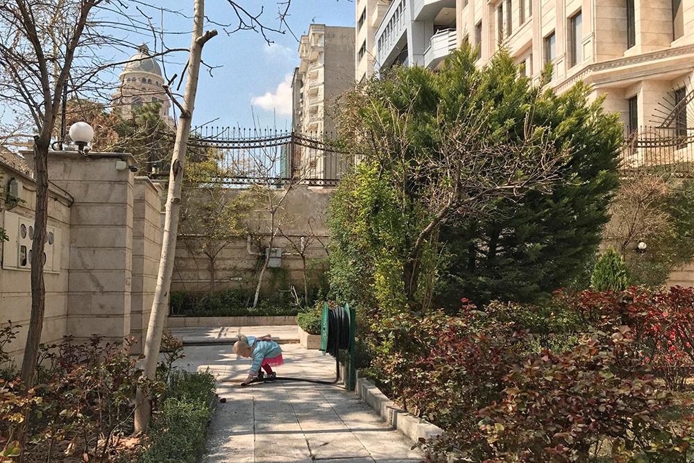 Перед домом ухоженный сад