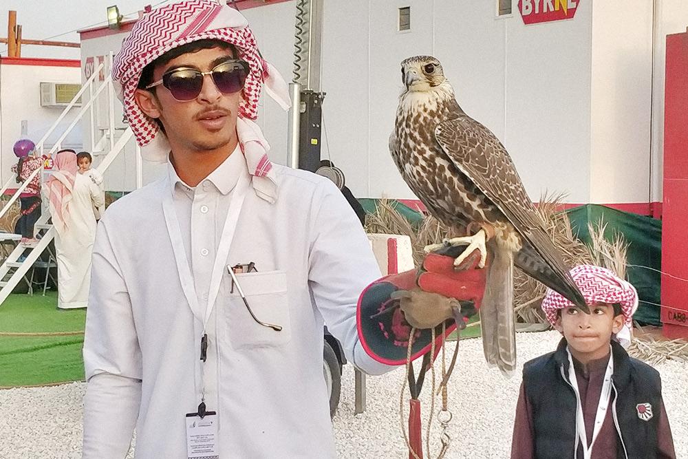 Фестиваль соколиной охоты. Владелец демонстрирует своего сокола. На нем национальная мужская одежда — галабея, а на голове традиционный платок — куфия
