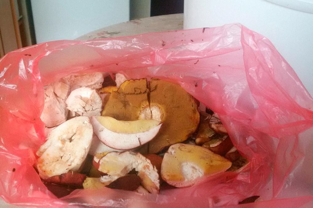 Так выглядят грибы, если полежат несколько часов в полиэтиленовом пакете. Это фото из моего архива, белые грибы испортила бабушка