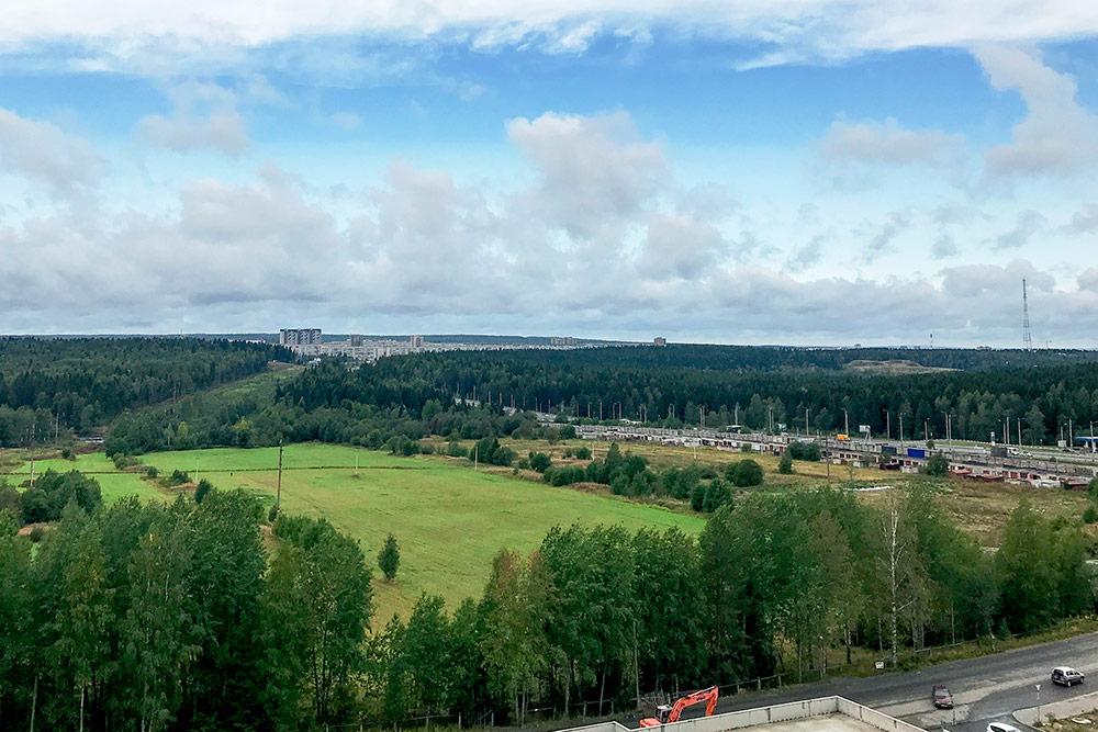 Вид из новых домов часто открывается на лес. Обычно его вырубают, но на этом участке не должны: рядом проходит линия электропередач