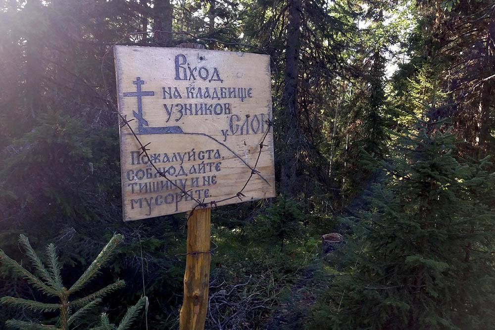 Спуск на кладбище узников. Могилы не подписаны, а только пронумерованы