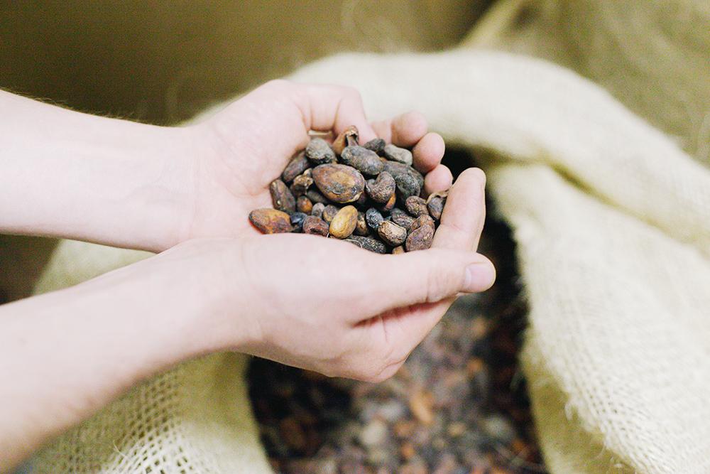 Фермерам выгодно перебрать бобы и выбросить крупный мусор — это повышает цену на товар