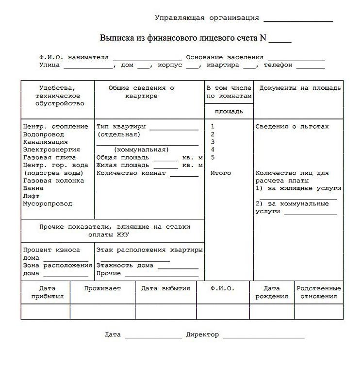 Бланк выписки из финансового лицевого счета