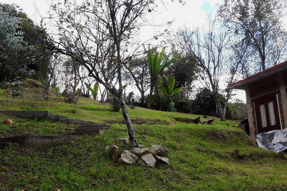 Дом на 2 человека (справа) с садом можно снять за 5500 песо (18 190<span class=ruble>Р</span>). В доме одна комната, кухня, веранда и небольшая столовая. Источник: vivanuncios