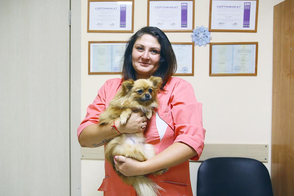 В клинике постоянно живут пять кошек и собака. Кого-то принесли усыпить, но ветеринарам стало их жалко, а кого-то просто подбросили