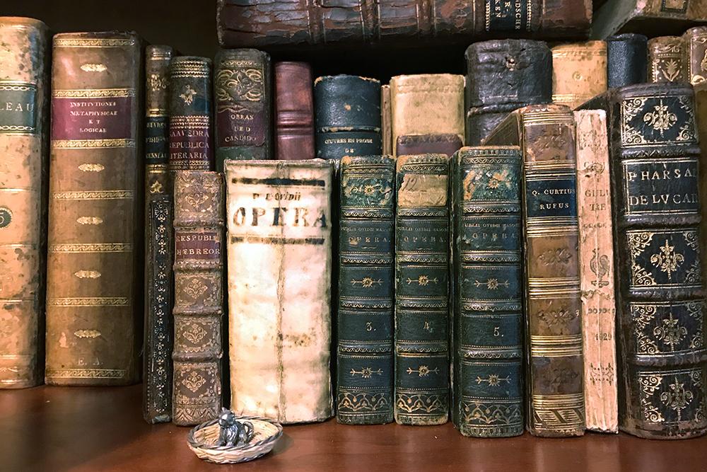 Небольшая часть моей коллекции старинных книг